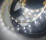 Iluminación de tira de moda de la tira el 19.2W/M SMD 5630 LED