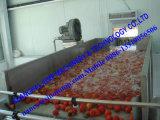 Nueva pasta de tomate a granel de cosecha en bolsa aséptica
