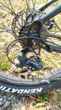 """350W visualización sin cepillo Ebike del LCD del motor de la bicicleta En15194 26 """" de la aleación del marco de litio de la batería de la bici eléctrica de la playa"""