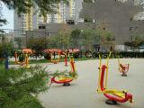 La gimnasia al aire libre trabaja a máquina Widly usado en la escuela, parque, hospitalidad con varios estilos