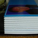 La scheda ambientale di vendita calda di Corflute di nuovo disegno su ordinazione firma la stampa
