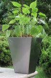 ステンレス鋼のGardernの植木鉢(FO-9002)