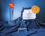 Personnaliser le trophée acrylique clair de récompense d'événement de trophée