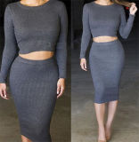 Il modo ha lavorato a maglia il vestito a due pezzi da Bodycon del collo rotondo sexy del collare