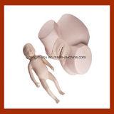 Simulatore avanzato di parto, modello formativo di ostetricia