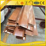 6063 T5 si sono sporti otturatore di alluminio di profilo dei fornitori di alluminio