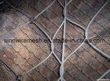 Rete fissa di collegamento Chain (TUFFO del PVC Coated&Hot galvanizzato)
