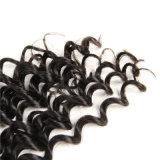 Glueless巻き毛の100%年のRemyの毛のレースの前部人間の毛髪のかつら
