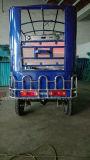 Automóvel elétrico do estilo do táxi de Bangladesh para o passageiro