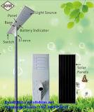 Installation facile 80W tout dans une lumière solaire Integrated