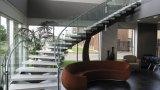 Moderne gebogene Glastreppenhäuser/gebogenes Glasgeländer