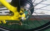Rétro ville 350W de type de la Hollande de cru voyageant la bicyclette d'E/Pedelec/bicyclette électrique
