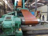 Folha revestida do aço PPGI/PPGL da cor de madeira do teste padrão na bobina 0.2-2.0mm*600-1250mm