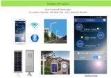 Réverbère solaire de bonne qualité du prix bas 16W DEL avec tous dans un modèle