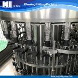 Chaîne de production remplissante d'eau embouteillée avec le type rotatoire