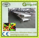 Processamento de vegetais de frutas transformando máquina Máquina de corte de vegetais de frutas