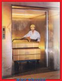Ascenseur/levage énormes de cargaison de capacité