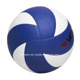 Прокатанные чувствительные персонализируют классицистический волейбол