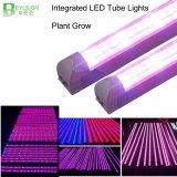 85-265V il tubo integrato Glrowth T8 LED della pianta di CA 60cm 90cm 120cm 150cm coltiva l'alta qualità chiara