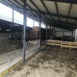 ISOはニースデザインの軽い鋼鉄低価格牛農場の小屋を組立て式に作った