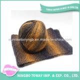 Высокая прочность мериносовой шерсти Рука Вязание Пряжа Fancy (CSG1107-041)