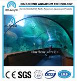Precio marina grande del proyecto del parque del mar del acuario