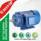 IEC Standard Y2 Series Three Phase Induction Motor