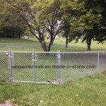 プラントのためのSailinのチェーン・リンクの塀は保護する