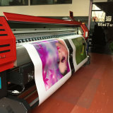 Impressora Inkjet principal de Dx5 Digitas