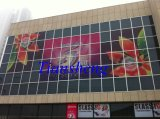 Glas Curtain Walls voor Building, Office, Shop Front/Aluminum Curtain Wall (aanbiedingsinstallatie indien nodig)