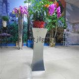 Bloempot Gardenpot van de Decoratie van het Roestvrij staal van de Grootte van de Hal van het hotel de Grote