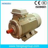 Электрический двигатель индукции чугуна высокой эффективности Ye3 трехфазный
