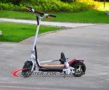 2개의 바퀴 성숙한 자전거 항공 위원회는 EEC를 가진 500 와트 Foldable 전기 스쿠터 Es5014 승인했다