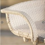 Белый цвет сада Патио мебель из ротанга Открытый барные (FS-WBS001 белый)