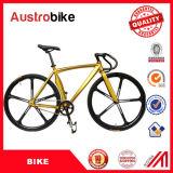 Attrezzo fisso di colore di alta qualità 700c 26inch di vendita della fabbrica della Cina della strada della bici dell'attrezzo della bicicletta fissa gialla nera della bici da vendere con Ce