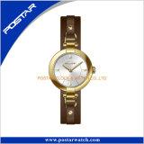 Het eenvoudige Horloge van de Luxe van het Roestvrij staal van de Versie Uitstekende met Echt Leer