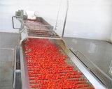 Máquina automática da pasta de tomate do aço inoxidável