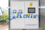 Eible Ice Cube Machine (8 Tonnen/Tag) mit Packing System