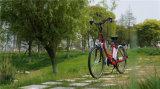 Bicicleta eléctrica 26 '' de la ciudad clásica de 36V 250W