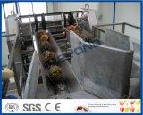 chaîne de fabrication d'ananas