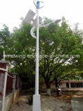 Generatore di vento verticale di asse con il sistema dell'indicatore luminoso di via (200W-5KW)