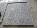 Granito branco cinzento G603 de Padang G603 Bella