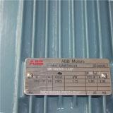 Moteur pour la machine en verre horizontale de machine/bord de Dubbel