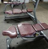 O exercício abdominal senta acima o banco de peso (XW41)