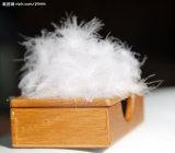 綿のキルトにする羽毛布団