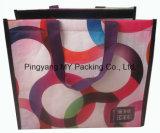 Sacchetto del dispositivo di raffreddamento della laminazione del sacchetto OPP del pranzo di picnic di promozione tessuto pp