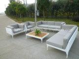 O sofá chinês do Rattan da mobília ajustou-se com tabela do Teakwood