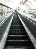 Escalator fait en acier inoxydable de la Chine