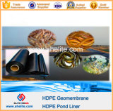 Forro da lagoa do camarão dos peixes do HDPE