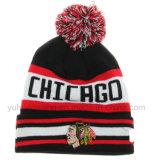 Le chapeau/chapeau de crâne de jacquard tricotés parhiver, façonnent le Beanie chaud